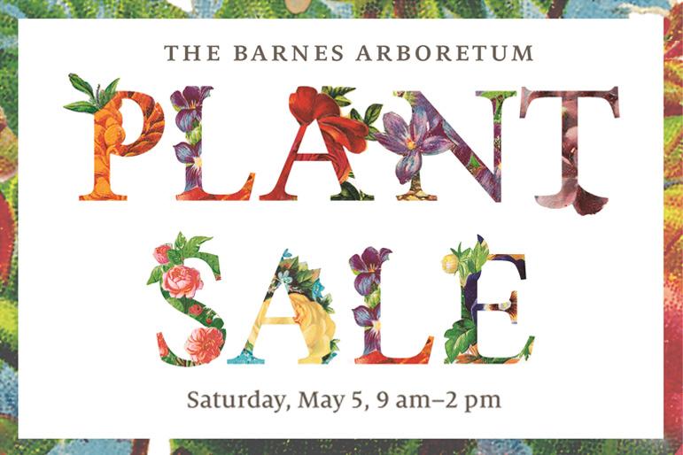 The Barnes Arboretum Plant Sale | John B Ward Co.
